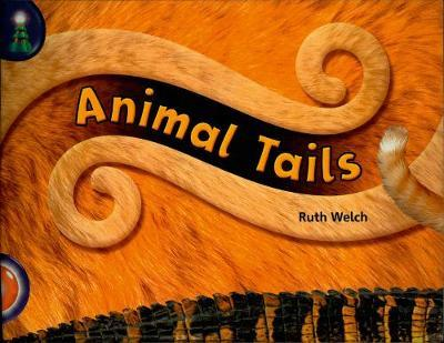 Lighthouse: Year 1 Orange - Animal Tails