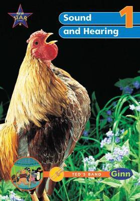 New Science Yr1/P2: Sound & Hearing Big Book