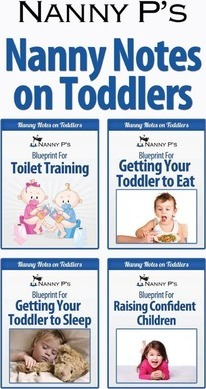 Nanny Notes on Toddlers  (nanny P's Blueprints for Toilet Training, Eating, Sleeping and Raising Confident Children)