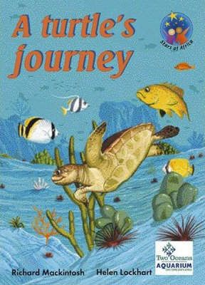 Turtles and the Reef: Cur 2005