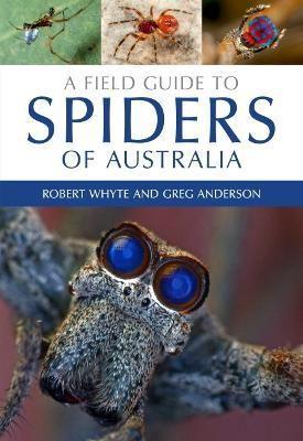 A Field Guide to Spiders of Australia Cover Image