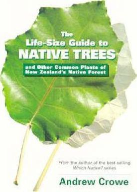 The Life-Size Guide to the Trees And Other Common Plants of New Zealand's Native Forest