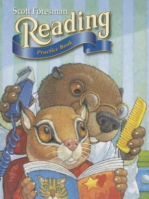 Reading 2000 Practice Book with Selection Tests Grade 2.1
