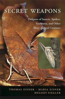 Secret Weapons : Defenses of Insects, Spiders, Scorpions, and Other Many-Legged Creatures