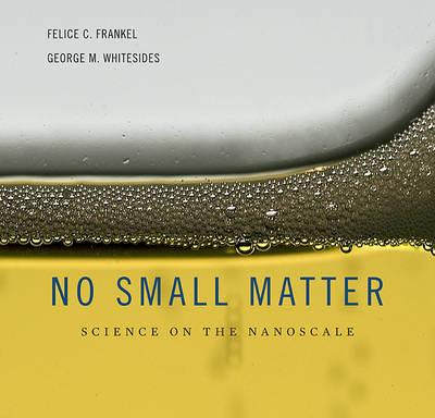 No Small Matter : Science on the Nanoscale