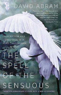 Spell Of The Sensuous : Perceptions