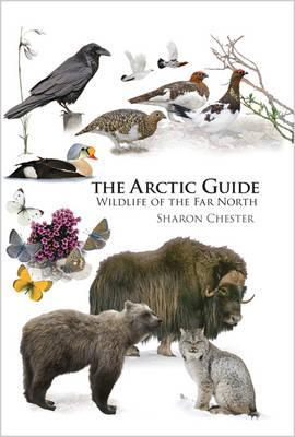 The Arctic Guide : Wildlife of the Far North