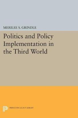 what is policy implementation and what are its main features