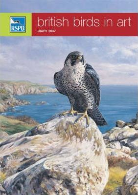 RSPB British Birds in Art 2007