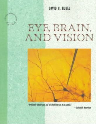 Eye, Brain and Vision