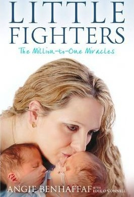 Little Fighters