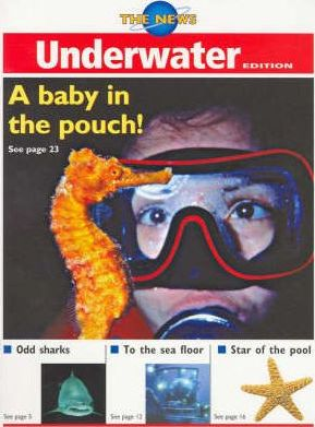 The News: Underwater (4 Copies)