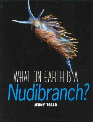 What on Earth is a Nudibranch?