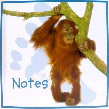 Cute Animals Notebook: Orang-U