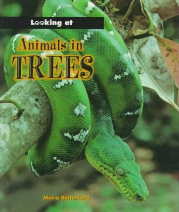Animals in Trees