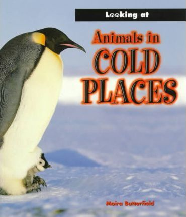 Animals in Cold Places