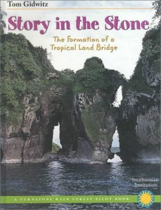Story in the Stone