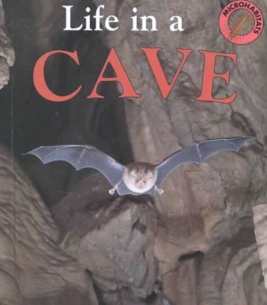 Life in a Cave