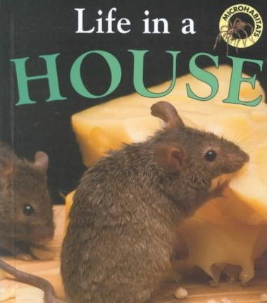 Life in a House