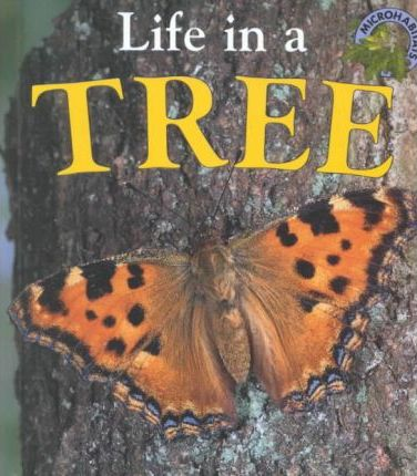 Life in a Tree