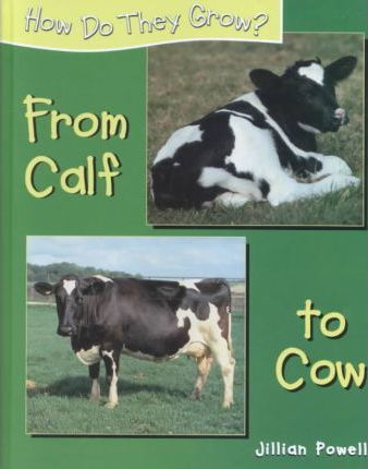 From Calf to Cow