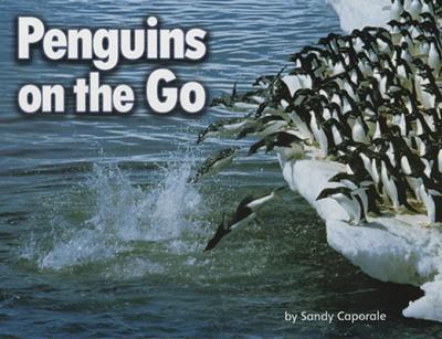 Penguins on the Go
