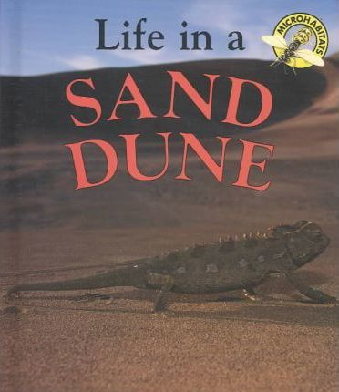 Life in a Sand Dune