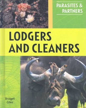 Lodgers and Cleaners