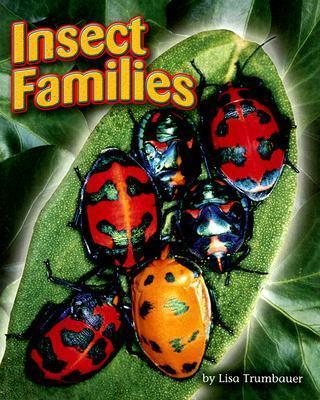 Insect Families