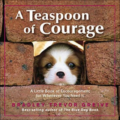 Teaspoon of Courage