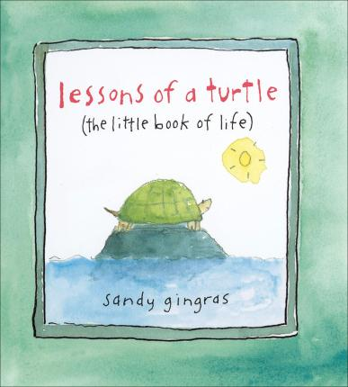 Lessons of a Turtle
