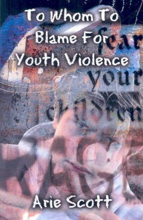 To Whom to Blame for Youth Violence