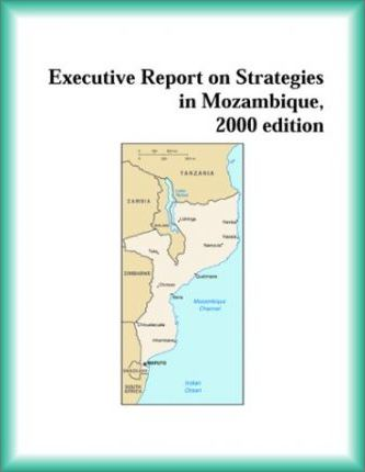 Executive Report on Strategies in Mozambique, 2000 Edition