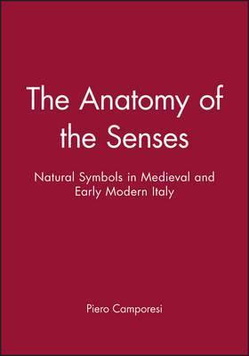 The Anatomy of the Senses