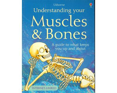 Understanding Your Muscles and Bones