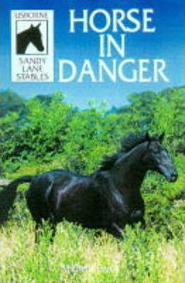 Horse in Danger