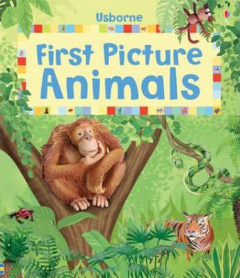 First Picture Animals