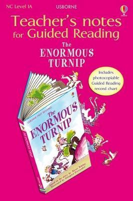 Usborne Guided Reading Pack