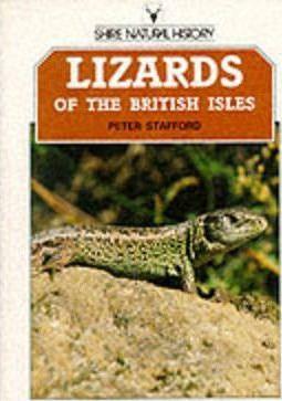 Lizards of the British Isles