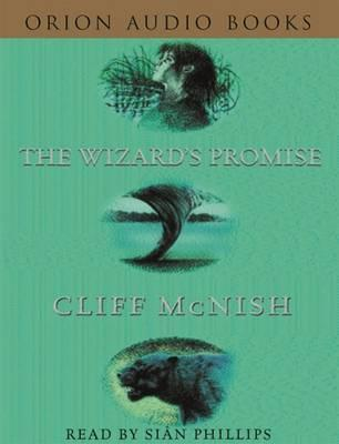 Wizard's Promise audio