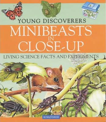 Minibeasts in Close Up