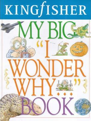 My Big I Wonder Why... Book