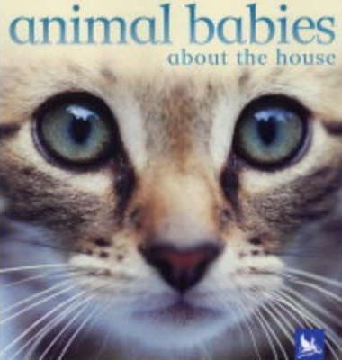 Animal Babies About the House