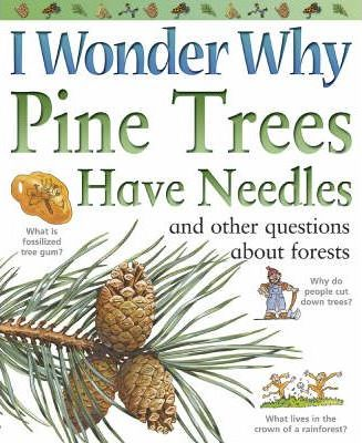 I Wonder Why Pine Trees Have Needles