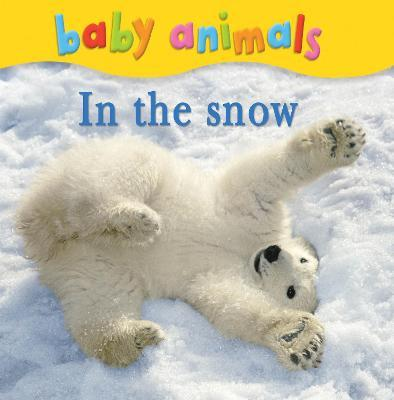 Baby Animals: In the Snow