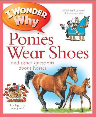 I Wonder Why Ponies Wear Shoes
