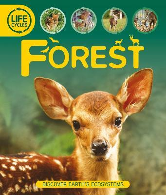 Life Cycles: Forest