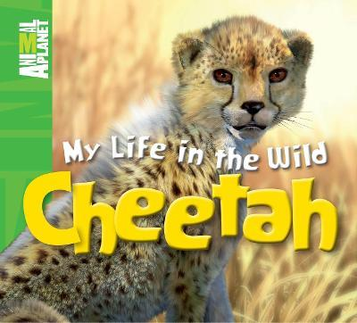 Animal Planet My Life in the Wild: Cheetah