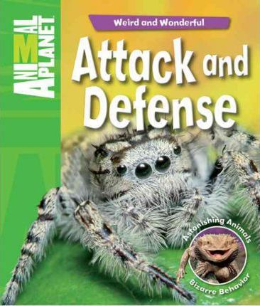 Attack and Defense