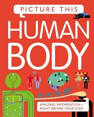 Picture This: Human Body